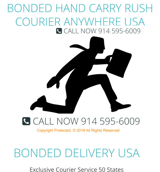 BONDED DELIVERY USA Exclusive Courier Service 50 States BONDED HAND CARRY RUSH COURIER ANYWHERE USA Copyright Protected. © 2018 All Rights Reserved